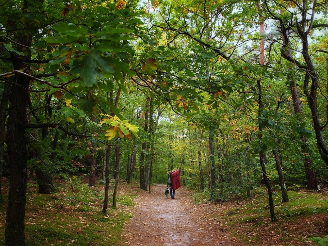 Jani Lehtola entering the Forest of Fontainebleau