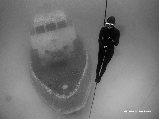 Free immersion descent in Malta (2015)