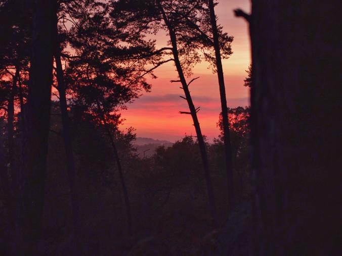 Sunset in Cuvier Rempart (Autumn 2016)
